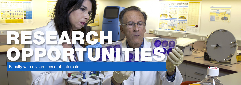 Research Opportunities - Faculty with diverse research interests