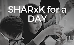 sharxk for a day